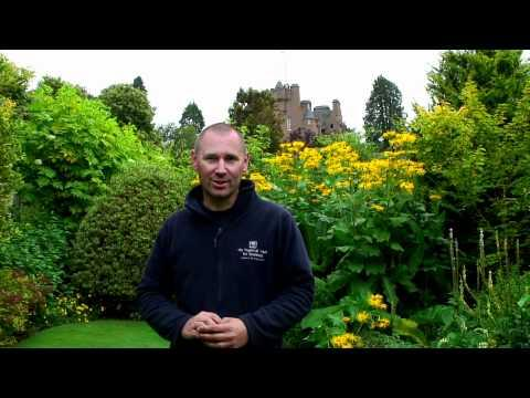 National Trust For Scotland - Crathes Gardens