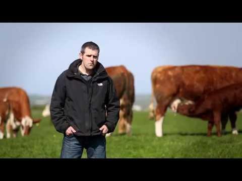 Orkney Monitor Farm