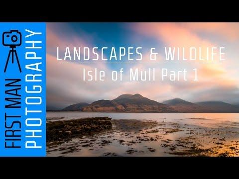 Landscapes And Wildlife Photography On The Isle Of Mull In Scotland