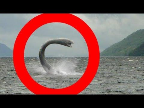 Latest Real LOCH NESS MONSTER Sightings Video! The Ultimate NESSIE SUPER COMPILATION!