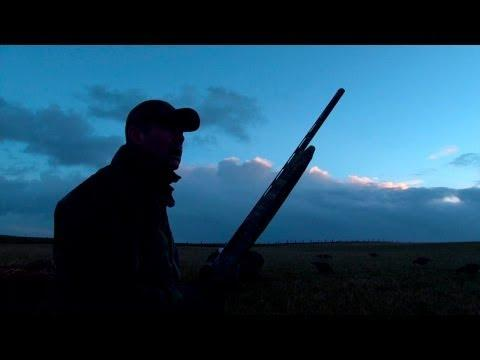 The Shooting Show -- Orkney Goose Flight And The Show's Top Kill Shots