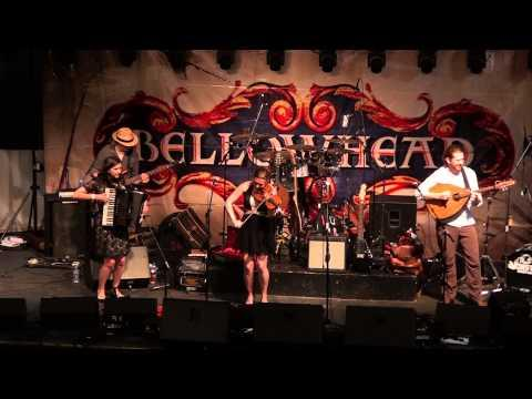Monster Ceilidh Band@National Forest Folk Festival 2013