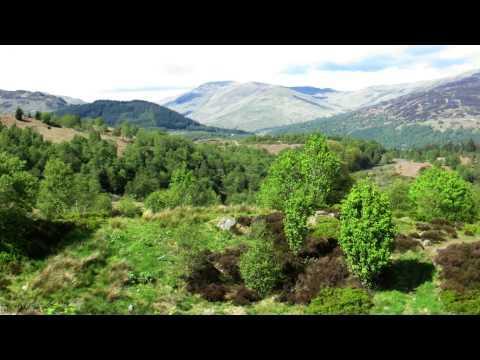 Trossachs Nationalpark Schottland