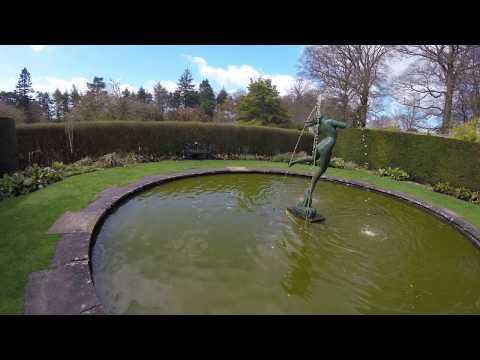 Foam, Water Nymph At Greenbank Gardens
