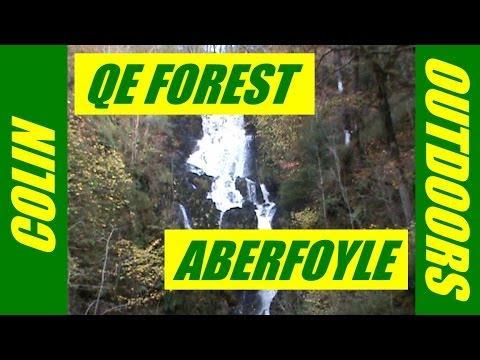 Queen Elizabeth Forest Aberfoyle