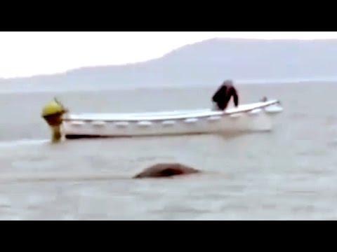 The Loch Ness Monster Caught On Camera