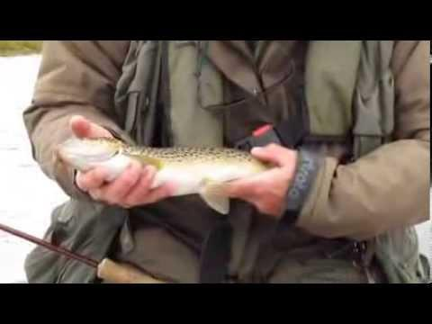Orkney Trout Fishing