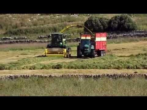 Harvesting Near March Road, Wick, Caithness
