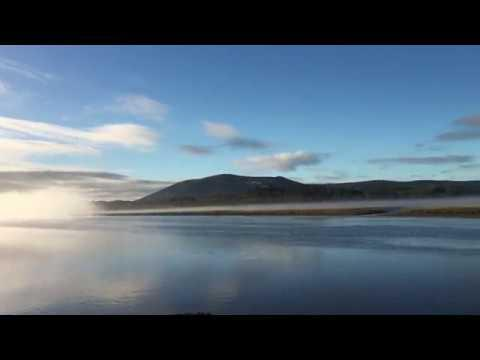 Misty Morning Barnacle Geese, Glencaple, Caerlaverock
