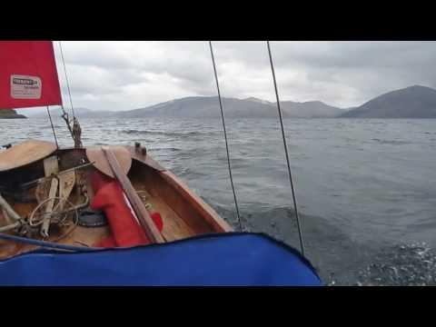 Curlew Goes To Scotland