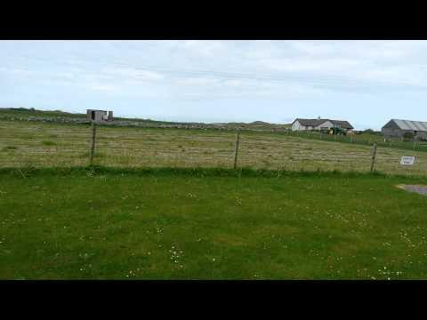 Bird Song In Benbecula In The Outer Hebrides