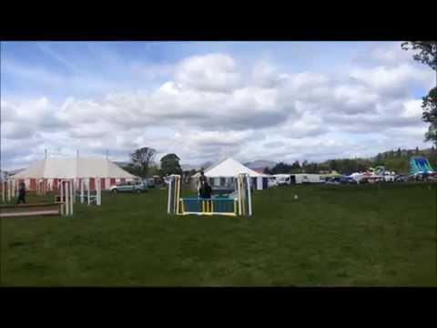 Buddy Winning The Intermediate Jumping At Drymen Show 2015