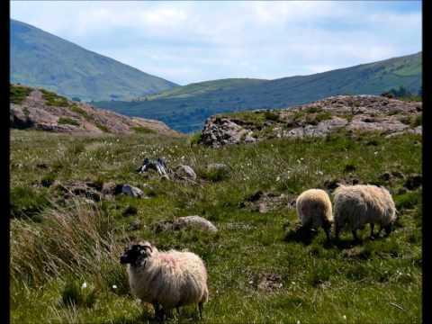 Shepherd Lad - Battlefield Band