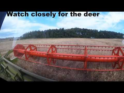 Scottish Borders Harvest 2016