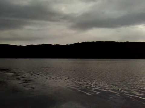 Hooked On Nector: Cormorant Fishing On Loch Venacher