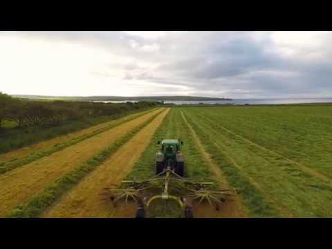 Thurso East Silage
