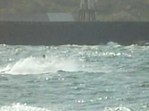 Jetski In Wick Harbour Caithness Part 17