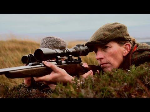 Hirschjagd Auf Islay