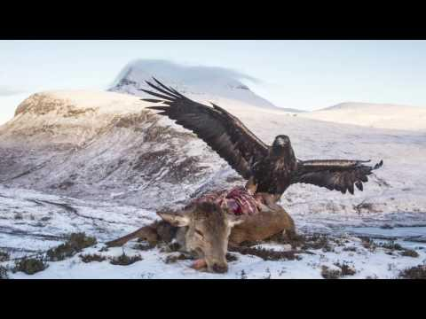 SCOTLAND: The Big Picture - An Introduction