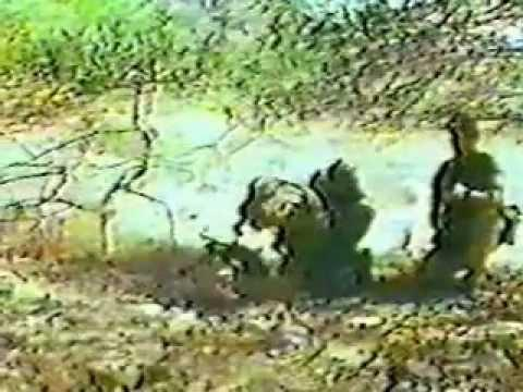 Argylls Plymouth 1968 Part 1 Of 9